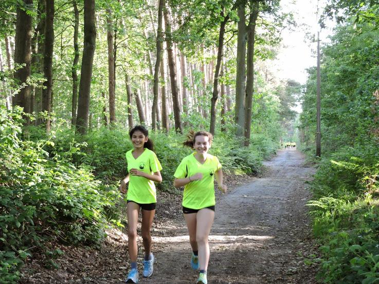 http://www.joggingclubmoerbeke.be/2014/s2r/jes01.jpg