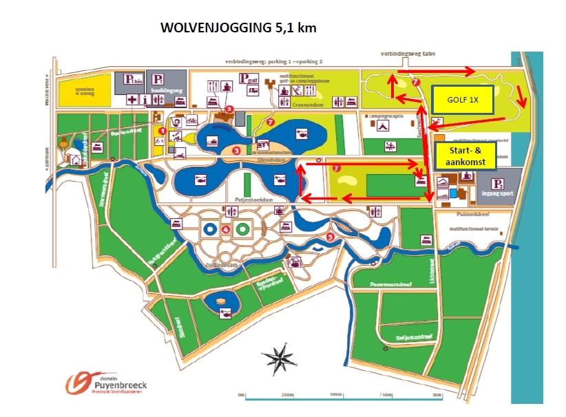 http://www.joggingclubmoerbeke.be/2015/wolf/wolf51.jpg