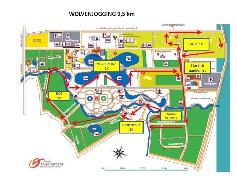http://www.joggingclubmoerbeke.be/2015/wolf/wolf95.jpg